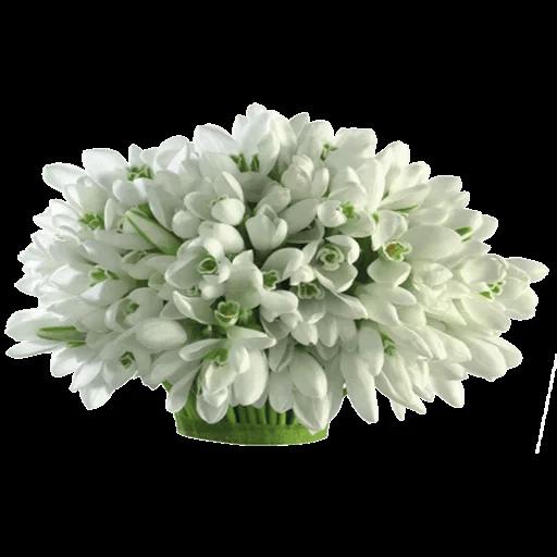 White Flowers @ykinanah - Sticker 14