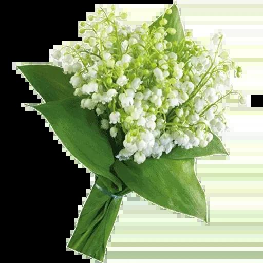 White Flowers @ykinanah - Sticker 21