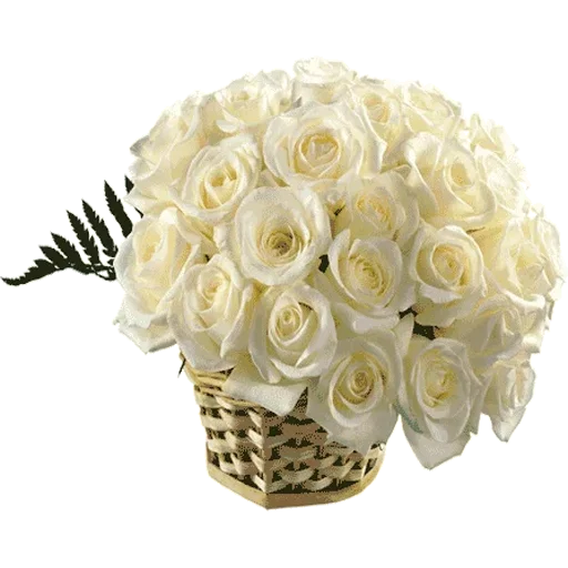 White Flowers @ykinanah - Sticker 16