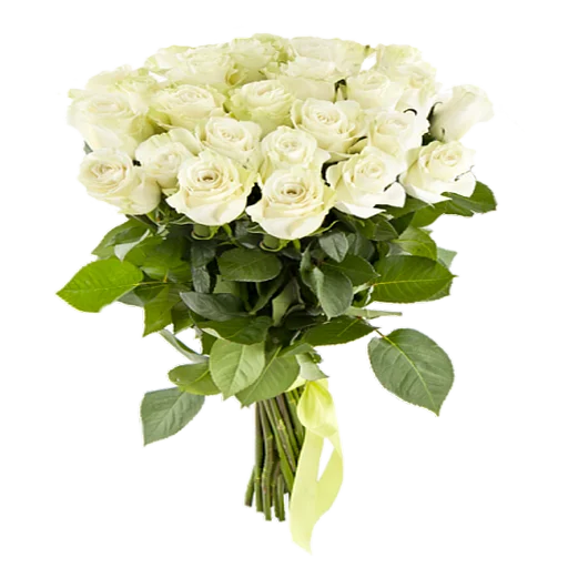 White Flowers @ykinanah - Sticker 23