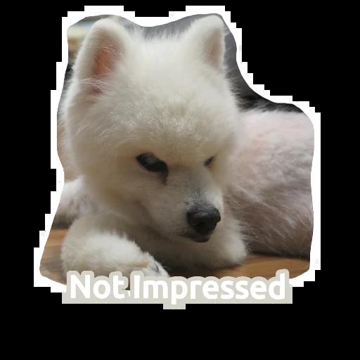 egan  - Sticker 14