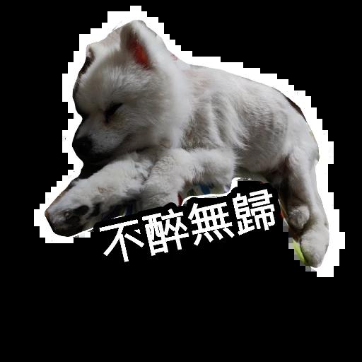 egan  - Sticker 19