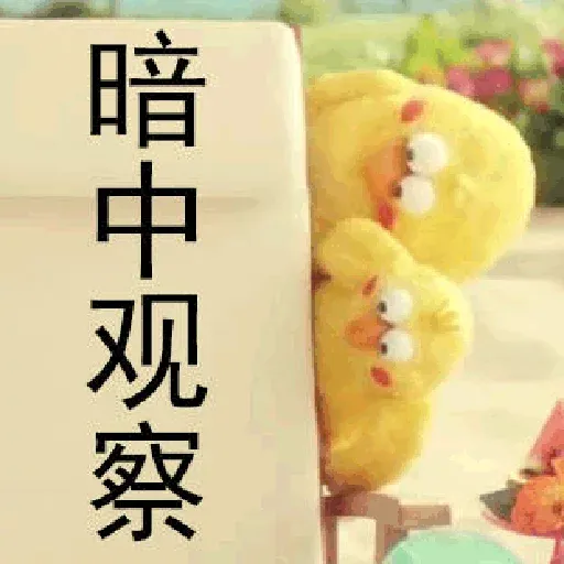 鸚鵡兄弟 - Sticker 9