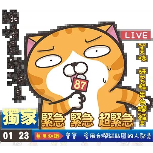 白爛貓3 - Sticker 11