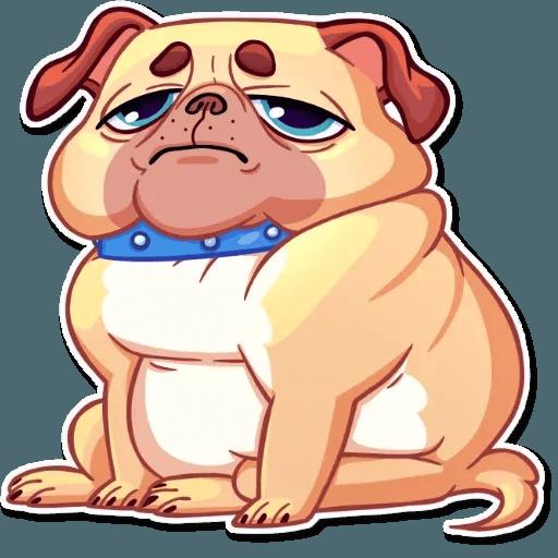 Pugford the Pug