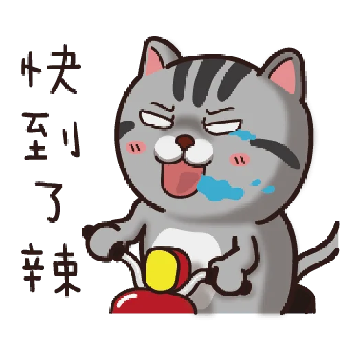 Cat - Sticker 21