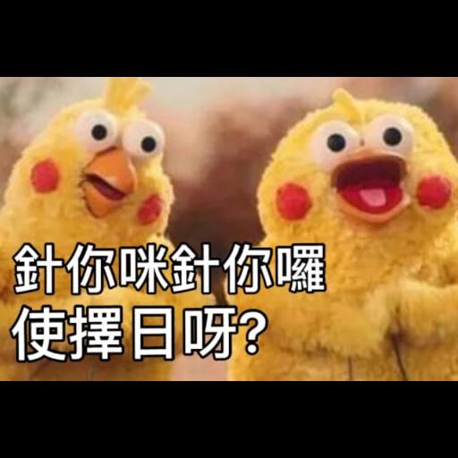黃色小雞3 - Sticker 10