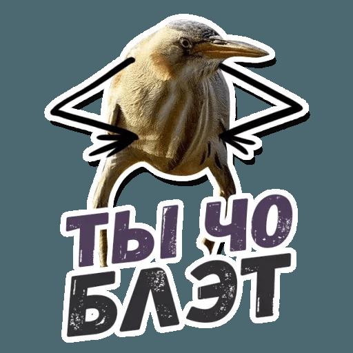 Blet - Sticker 14