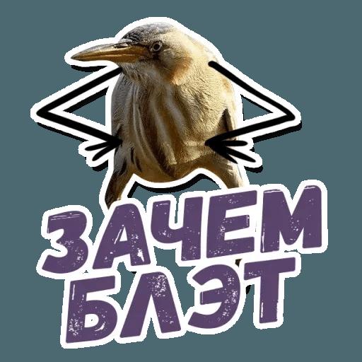 Blet - Sticker 5