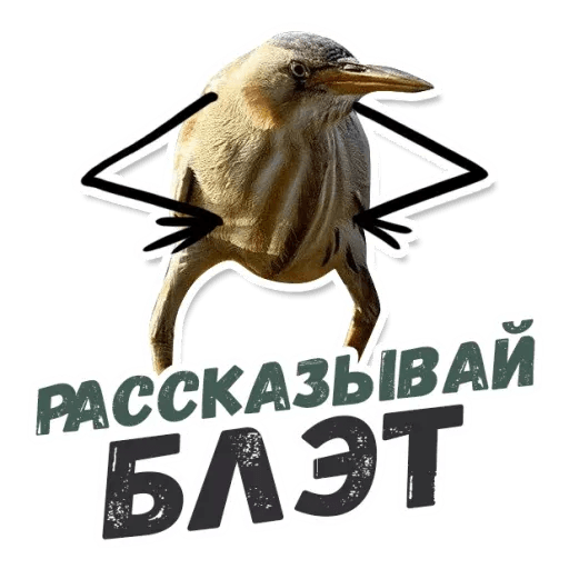 Blet - Sticker 16