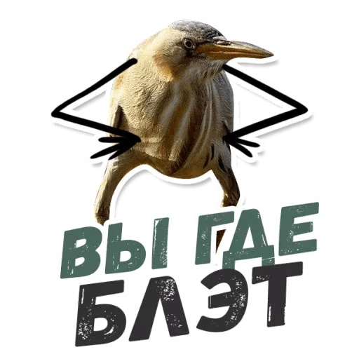 Blet - Sticker 18