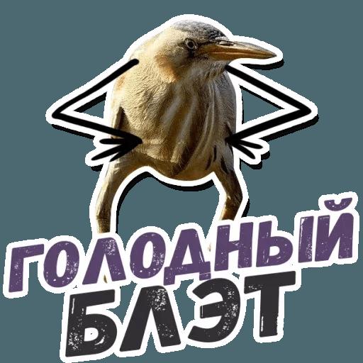 Blet - Sticker 8