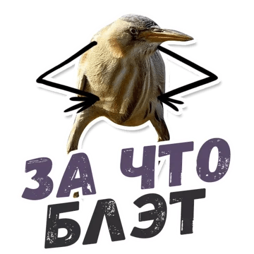 Blet - Sticker 20