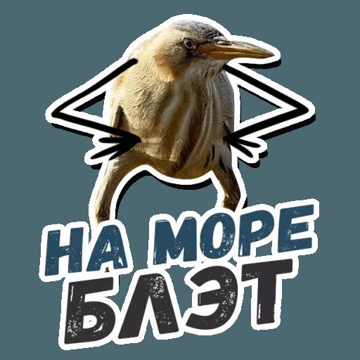 Blet - Sticker 10