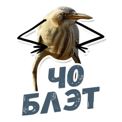 Blet - Sticker 2