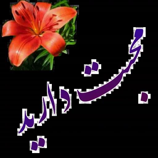 مراد اکبری - Sticker 20