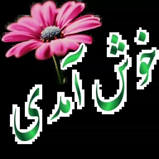 مراد اکبری - Sticker 1