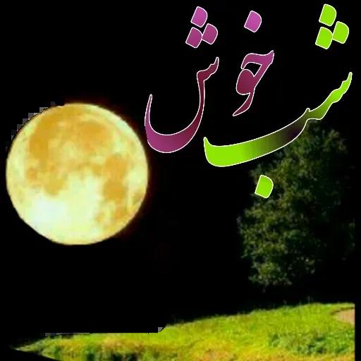 مراد اکبری - Sticker 11