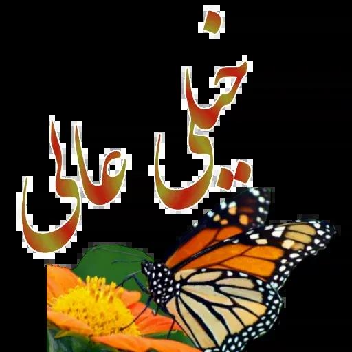 مراد اکبری - Sticker 30