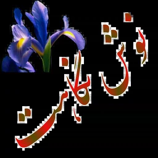 مراد اکبری - Sticker 19