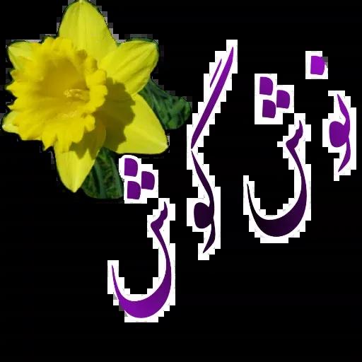 مراد اکبری - Sticker 23