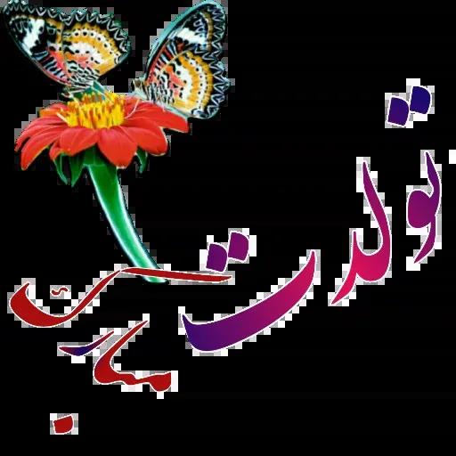 مراد اکبری - Sticker 9