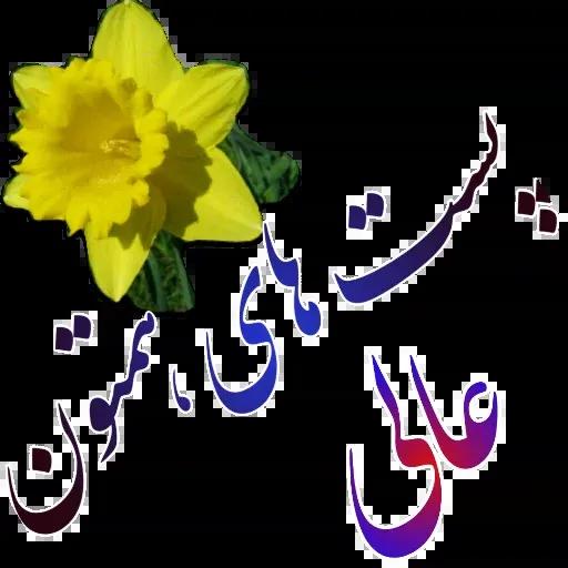 مراد اکبری - Sticker 29