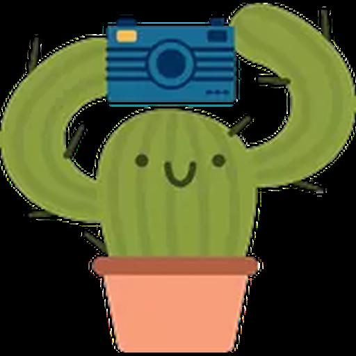 Prickly Pear - Sticker 1