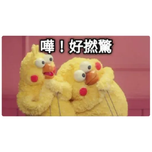 chicken - Sticker 13
