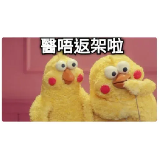 chicken - Sticker 20