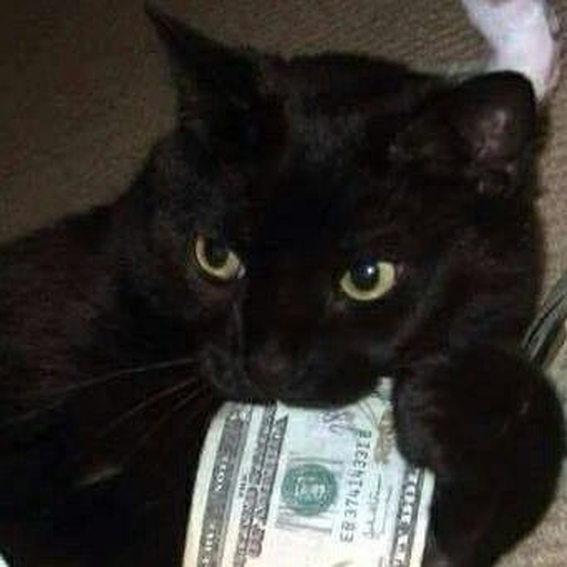Black Cat 2.0 - Sticker 24