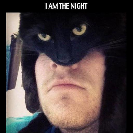 Black Cat 2.0 - Sticker 21