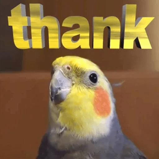 Bird 1 - Sticker 11