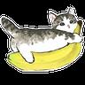 cat - Tray Sticker