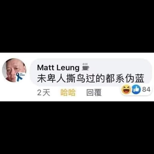 Matt Leung - Sticker 15