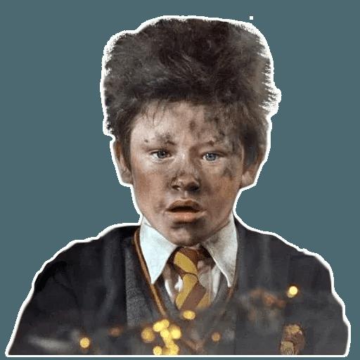HarryPotter2 - Sticker 21
