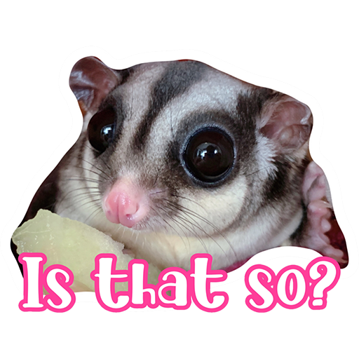 Sugar glider BB & BNUI (IG: lovelybjai) - Sticker 4