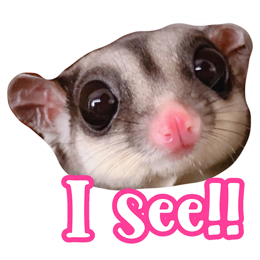 Sugar glider BB & BNUI (IG: lovelybjai) - Sticker 2