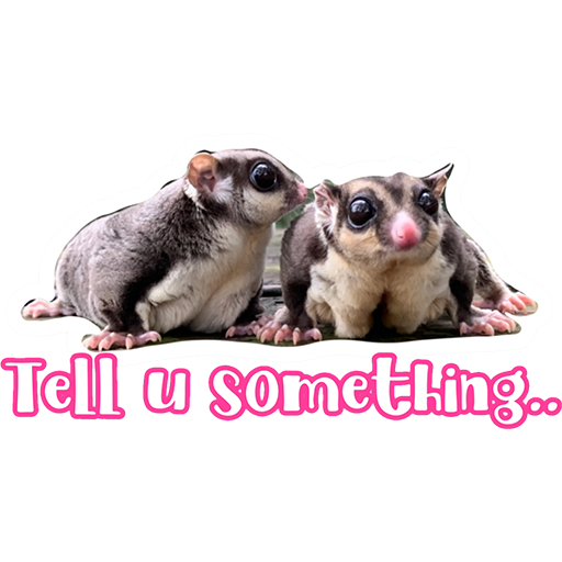 Sugar glider BB & BNUI (IG: lovelybjai) - Sticker 1