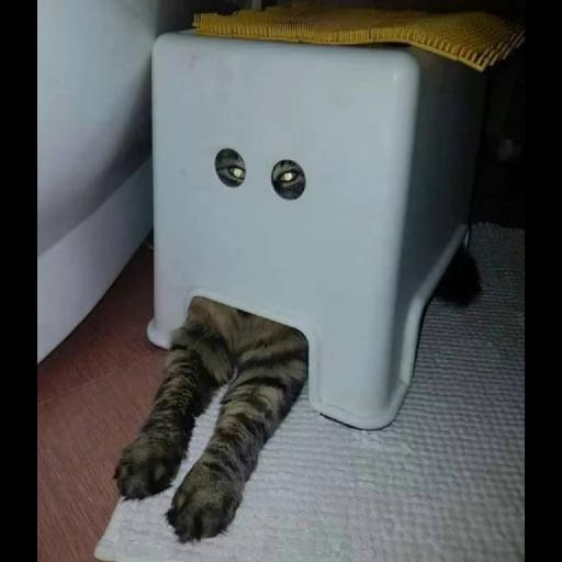 Cat2 - Sticker 25