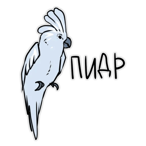Попугаи - Sticker 8