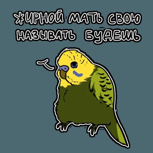 Попугаи - Sticker 1