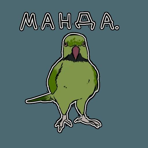Попугаи - Sticker 28