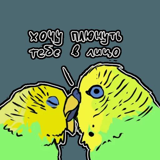 Попугаи - Sticker 5