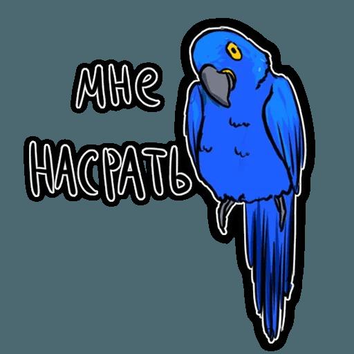 Попугаи - Sticker 21