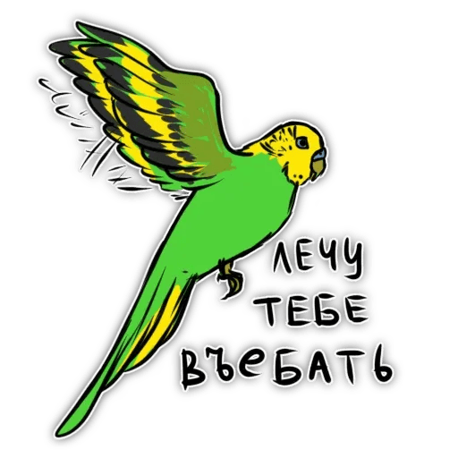 Попугаи - Sticker 11