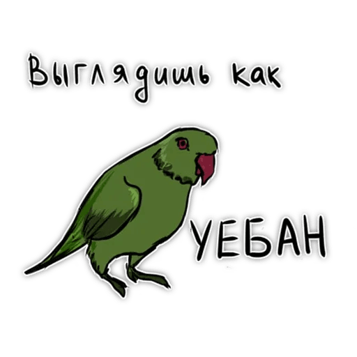 Попугаи - Sticker 24