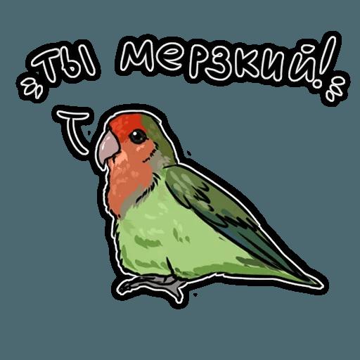 Попугаи - Sticker 15