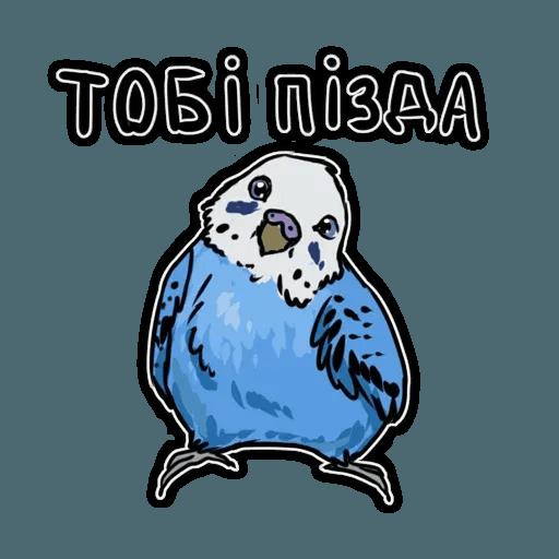 Попугаи - Sticker 16