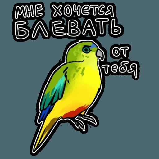 Попугаи - Sticker 18